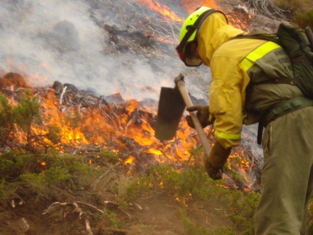 Brigadistas del MAGRAMA actúan en un incendio en el Puerto del Pico, en 2012