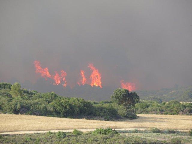Incendio de las Cinco Villas desde Farasdués.