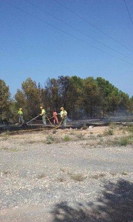 Tarea de repaso de los bomberos