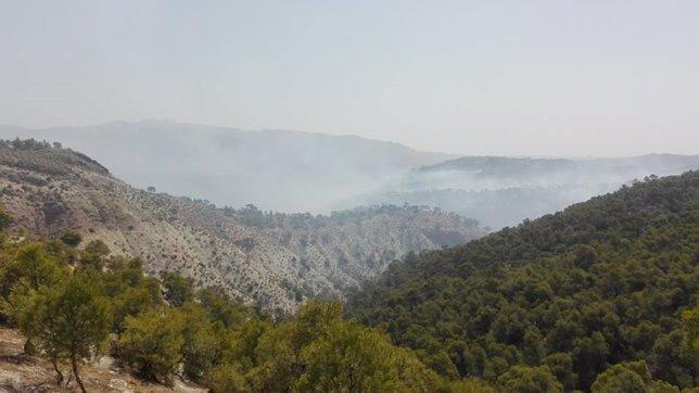 Zona del incendio de Quesada