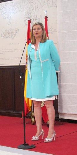 La consejera de Hacienda y Economía de la Junta, Pilar del Olmo.
