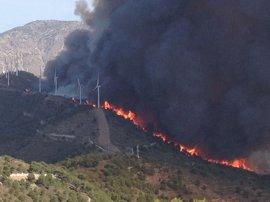 Cuatrocientos desalojados en Lújar por un incendio forestal en Gualchos