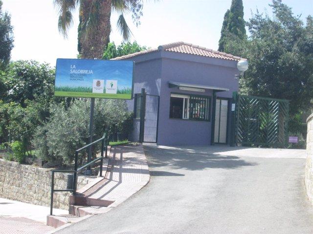 Acceso a la piscina municipal donde falleció el menor