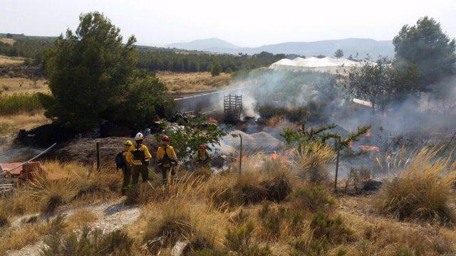 Bomberos trabajando en un incendio forestal en Abarán