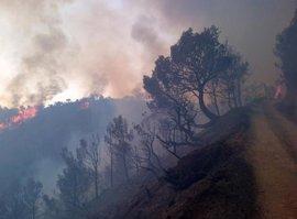 Incendios.- Ascienden a cerca de 550 los desalojados por el incendio de Gualchos tras otros 120 más en Rubite
