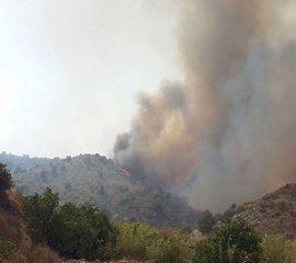 Pernoctan en polideportivos 170 de los 624 evacuados por el incendio de Gualchos