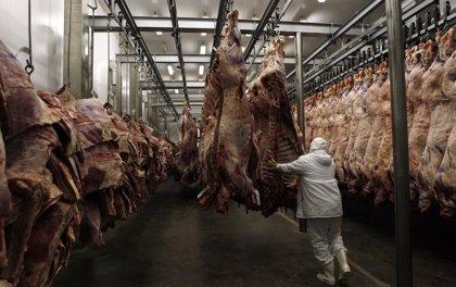 Producción de carne en Argentina suma 690.000 toneladas el 2º trimestre