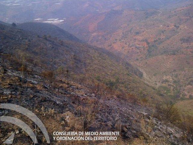 Zona afectada por el incendio en Gualchos