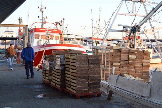 Barcos a su llegada al puerto pesquero de Motril.