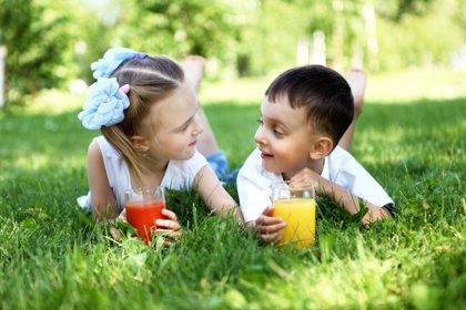 Propiedades nutricionales de los zumos de frutas en los meses de verano