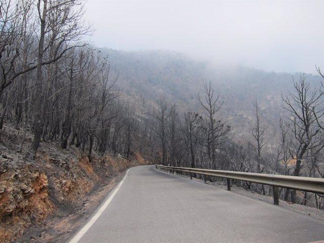 Carretera de Motril a Lújar con el paisaje devastado por el incendio.