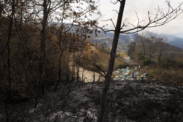 Incendio en el parque natural Baixa Limia-Serra do Xurés