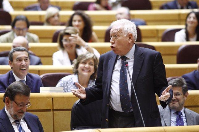 García Margallo en el Senado