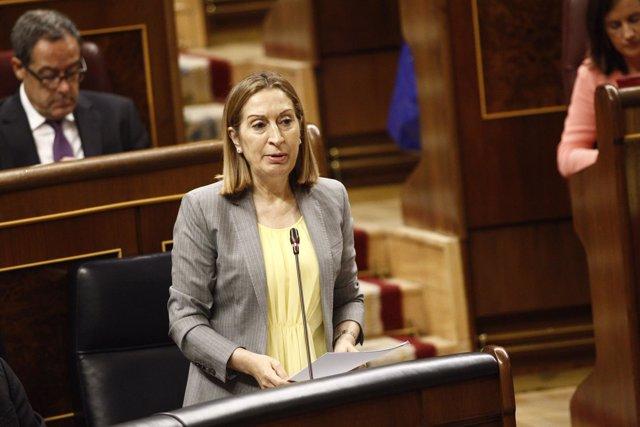 Ana Pastor en el Congreso
