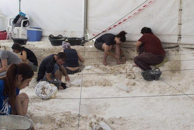 Excavación en el yacimiento de Venta Micena, en Orce