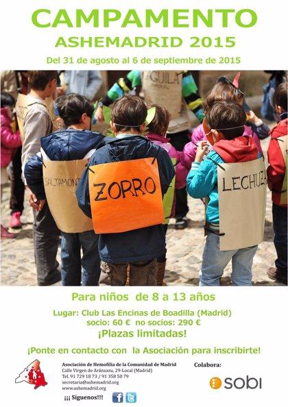 La Asociación de Hemofilia de la Comunidad de Madrid organiza un campamento para niños con la enfermedad