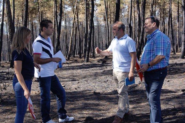 Representantes de Ciudadanos visitan la zona afectada por el incendio de Latedo