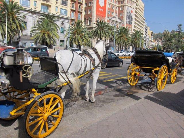 Calesas, caballos, carruajes, coche, turismo, turistas