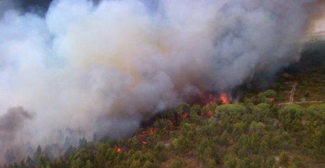 Declarado activo un incendio en el término municipal de Bollullos de la Mitación