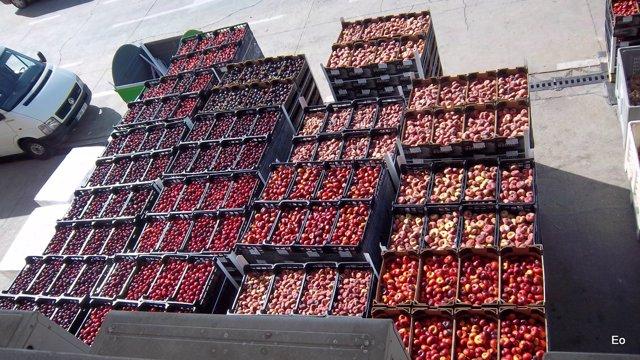 La fruta que se ha repartido por el Banco de Alimentos Medina Azahara