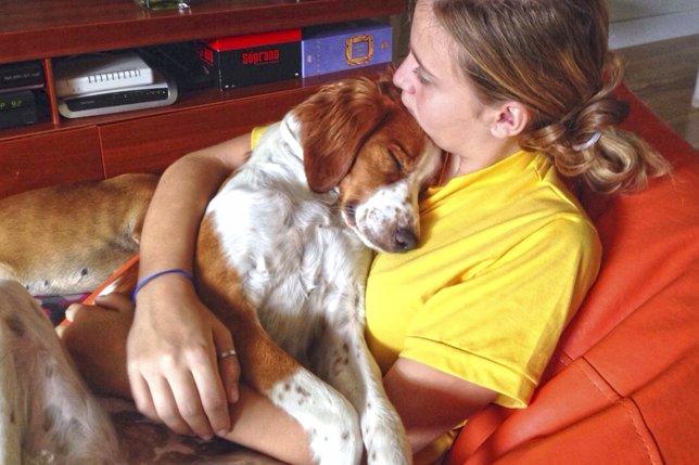 Malú, una perra abandonada en Moral de Calatrava (Ciudad Real) que fue rescatada