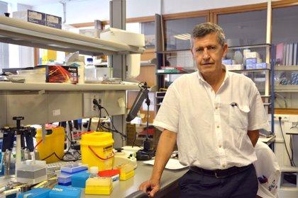 Julio Vázquez, nombrado director del Centro Nacional de Microbiología del ISCII