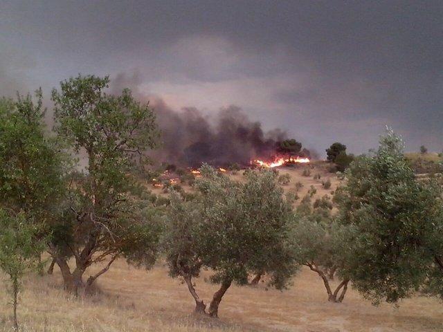 Foto del incendio de Quesada
