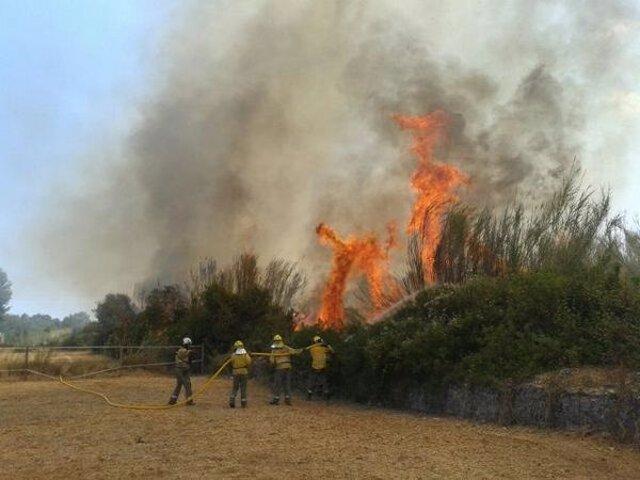 Incendio Santa Gertrudis