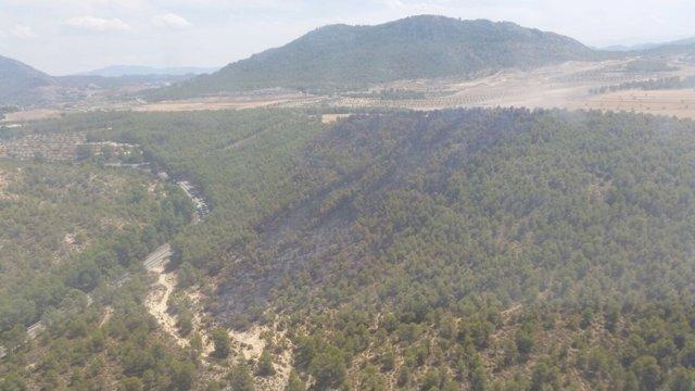 Incendio forestal en Calasparra