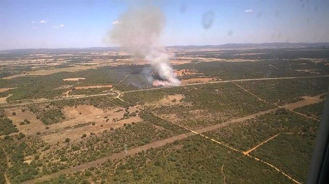 Fuego declarado en Vega de Tera (Zamora)