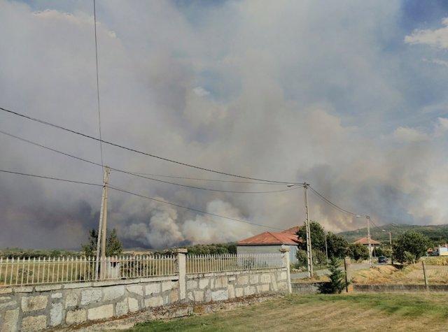 Incendio forestal en Cualedro (Ourense)