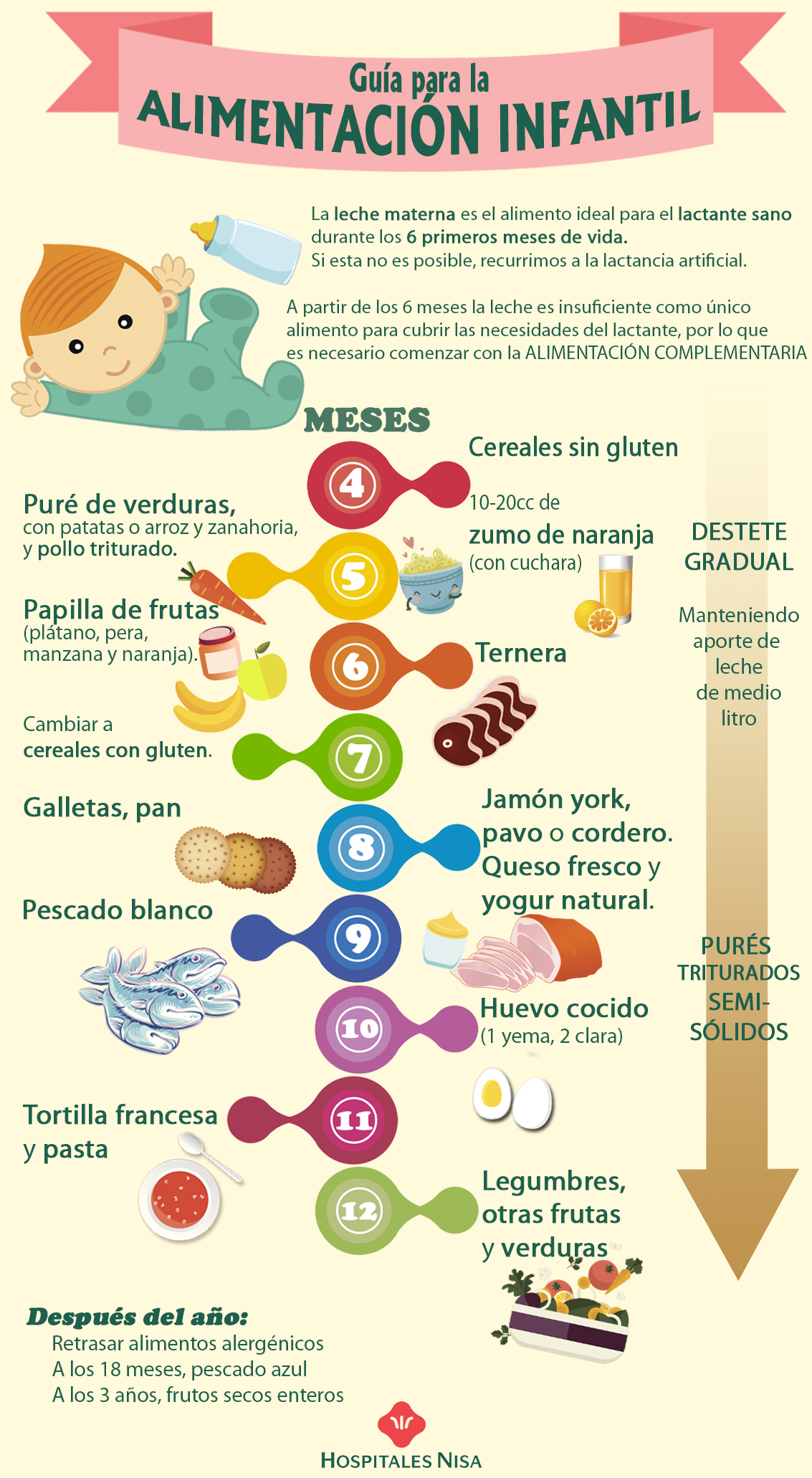Tabla De Introduccion De Alimentos En El Bebe