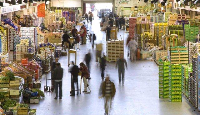 El mercado central de Barcelona. (Mercabarna)