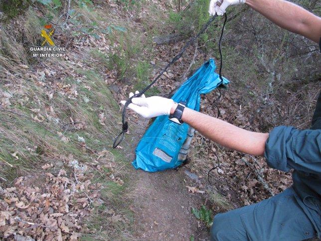 Cuerdas utilizadas para el ahorcamiento de los perros.