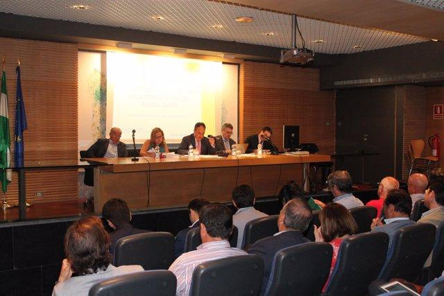 El Consejo de Agua de la Demarcación del Guadalquivir
