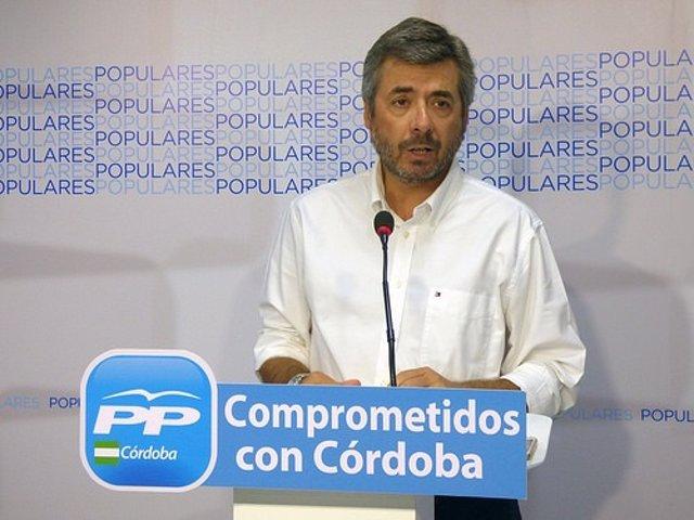 El parlamentrio andaluz del PP Miguel Ángel Torrico