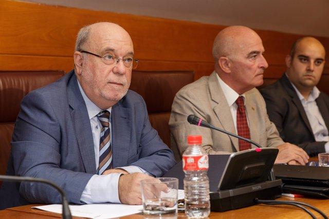 El consejero de Economía, Juan José Sota, comparece en el Parlamento