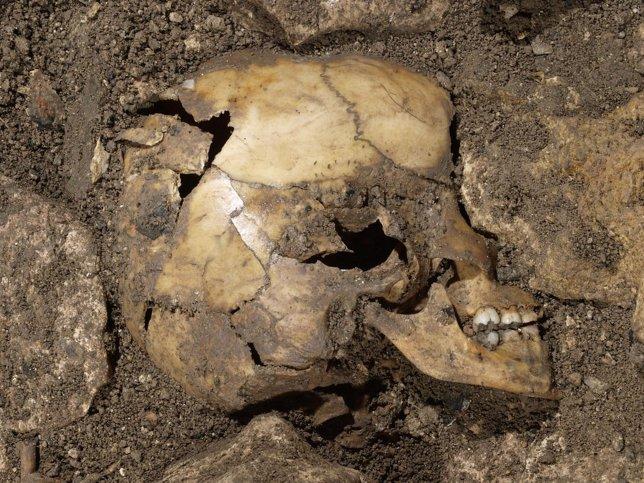 Restos humanos encontrados en Atapuerca