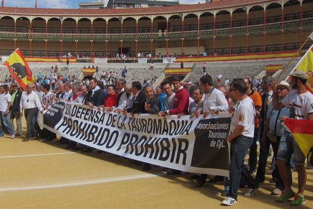 Los representantes de las asociaciones taurinas en la Plaza de Toros