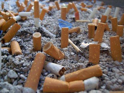 Fumar durante mucho tiempo ¿afecta al envejecimiento celular?