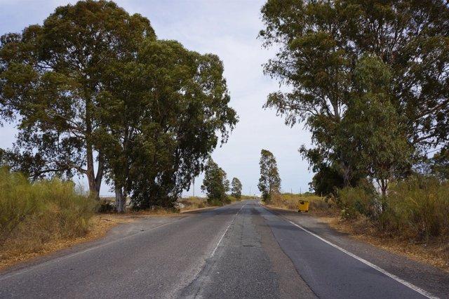 Carretera de Punta del Moral.