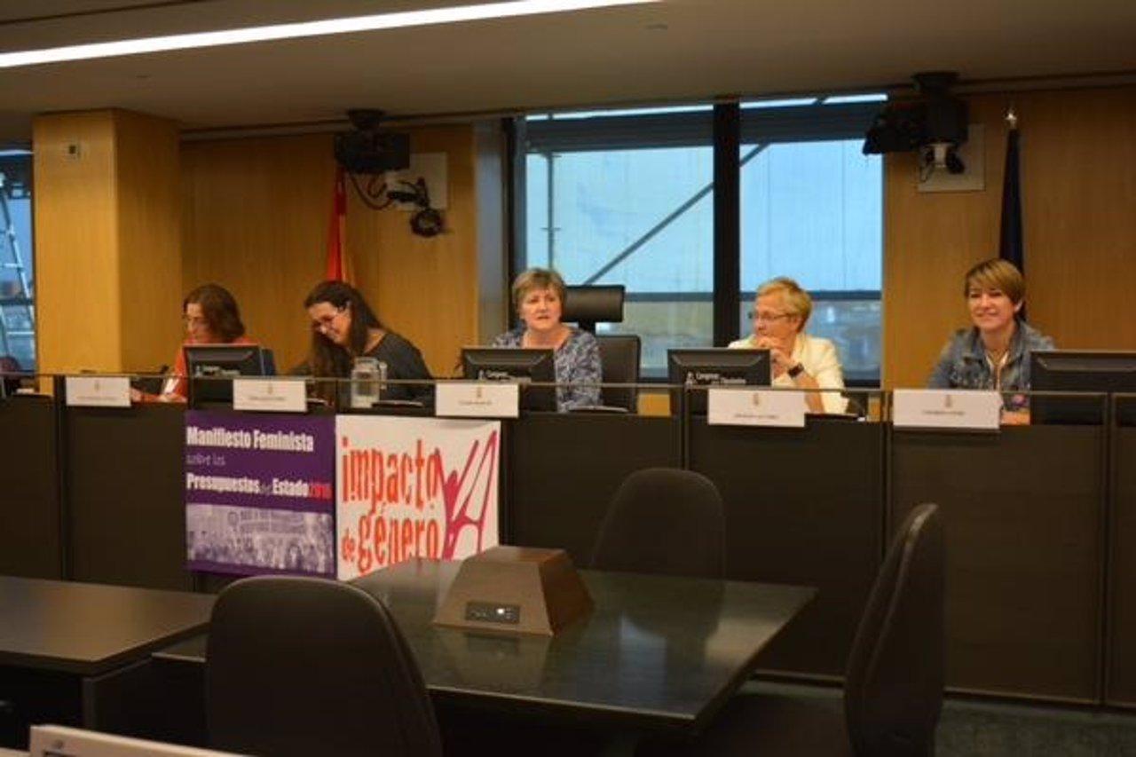 Los grupos parlamentarios denuncian con feministas los Presupuestos de Igualdad