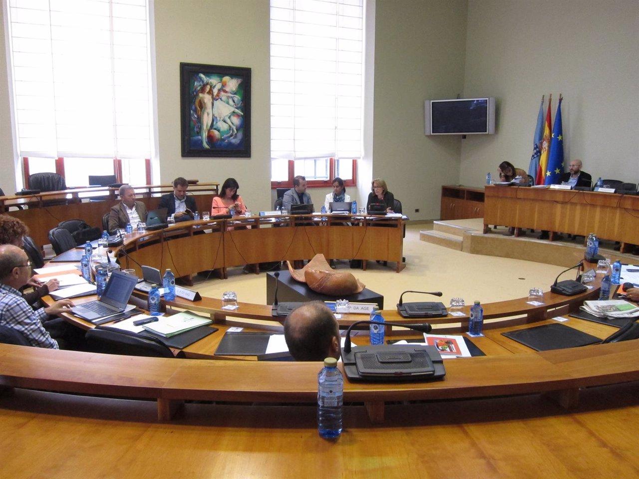Comisión Permanente non Lexislativa para as Relacións co Consello de Contas
