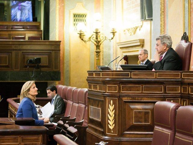 Fátima Báñez, en el Congreso