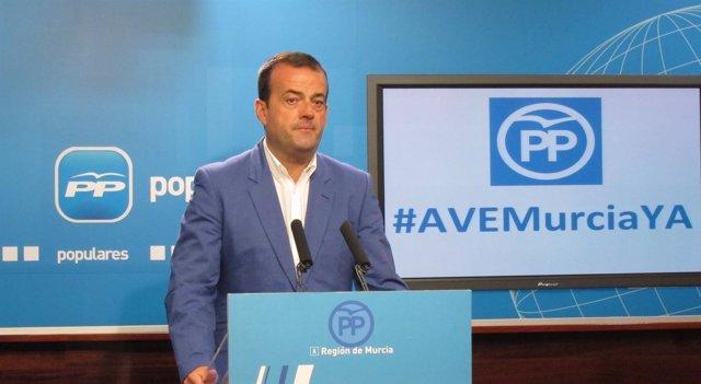 El portavoz del Partido Popular de la Región, Javier Iniesta