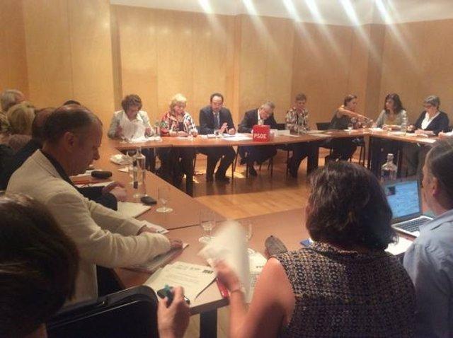 Reunión del Grupo Socialista en el Congreso con ONG