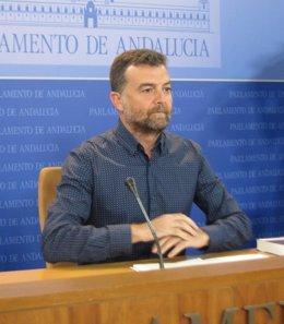 Antonio Maíllo, hoy en rueda de prensa