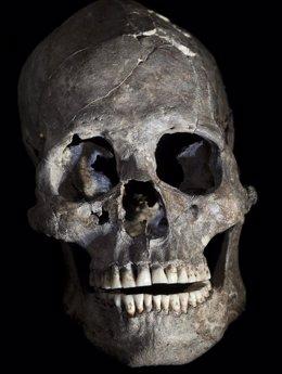 Fotografía de cabeza cortada del Enterramiento 26