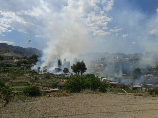 Efectivos del Plan Infomur trabajan en la extinción de un incenndio en Cehegín