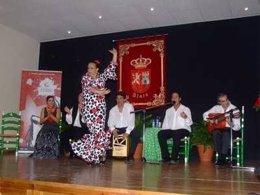 Gema garcés baile flamenco aula municipal actuación